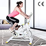 Indoor Fitness Exercise Bike,Cardio Workout, 8KG Flywheel...