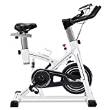 ERGO LIFE Exercise Bike Stationary Indoor Cycling Bicycle,...