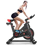 Delfy Stationary Exercise Bike, Indoor Cycling Spinning Bike with...