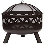 Gardenesque Hoole Collection, Cast Iron Fire Pit with Metal...