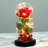 Beauty and the Beast Rose Kit, Red Silk Rose and LED Light for...