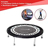 High Quality Professional Gym Rebounder for Home | Used in 1000's...