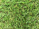 Zaragoza 30mm Pile Height Artificial Grass | Choose from 47 Sizes...