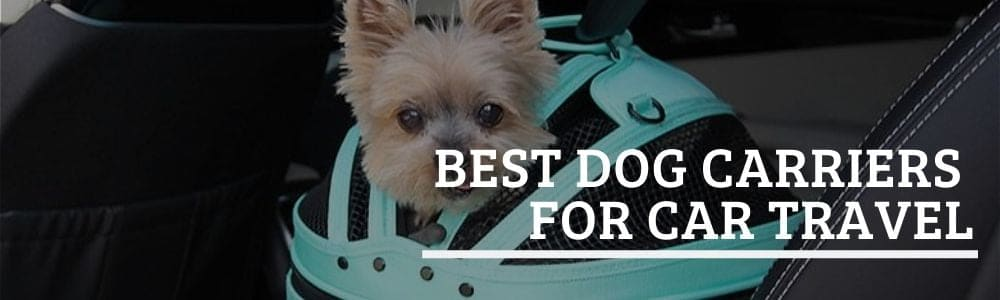 Best Dog Carriers for Car Travel