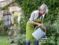 How Gardening Benefits Your Health
