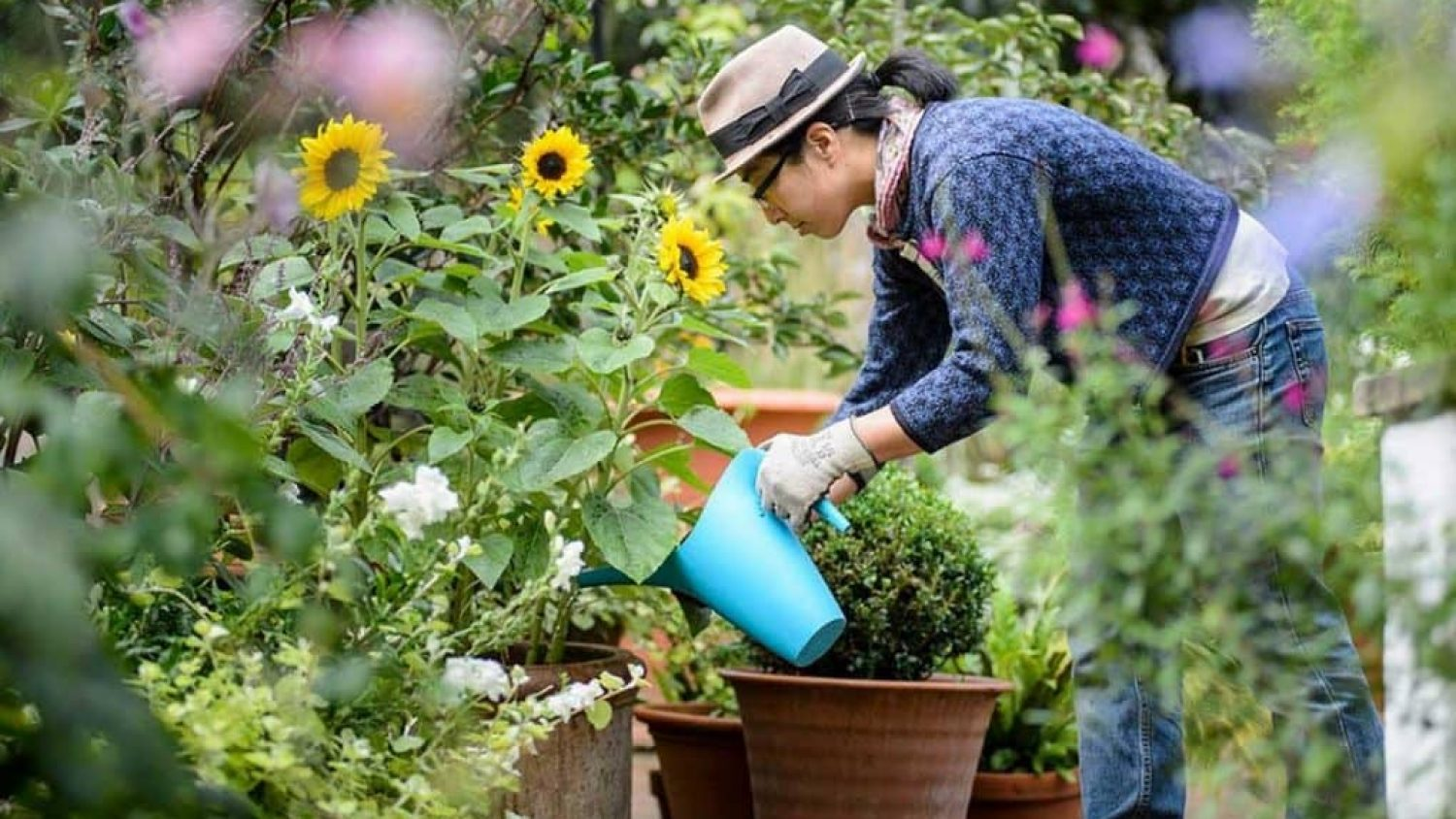 10 Common Garden Pests: How to Get Rid of Them and Have a Healthy, Thriving Garden