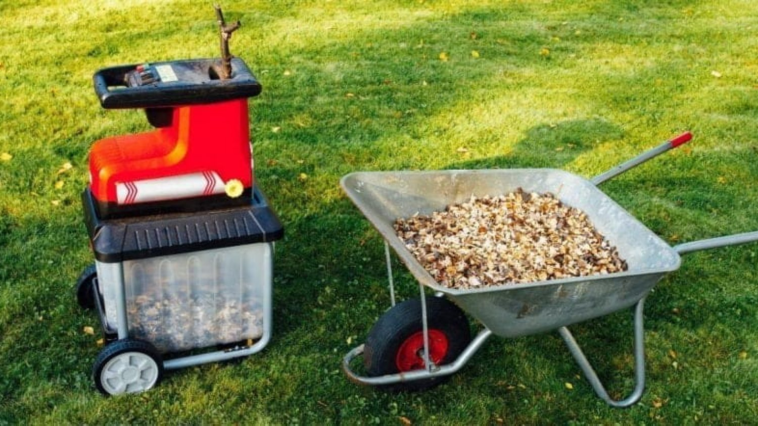 Should You Buy a Garden Shredder? 3 Reasons Why Garden Shredders Are a Great Investment!