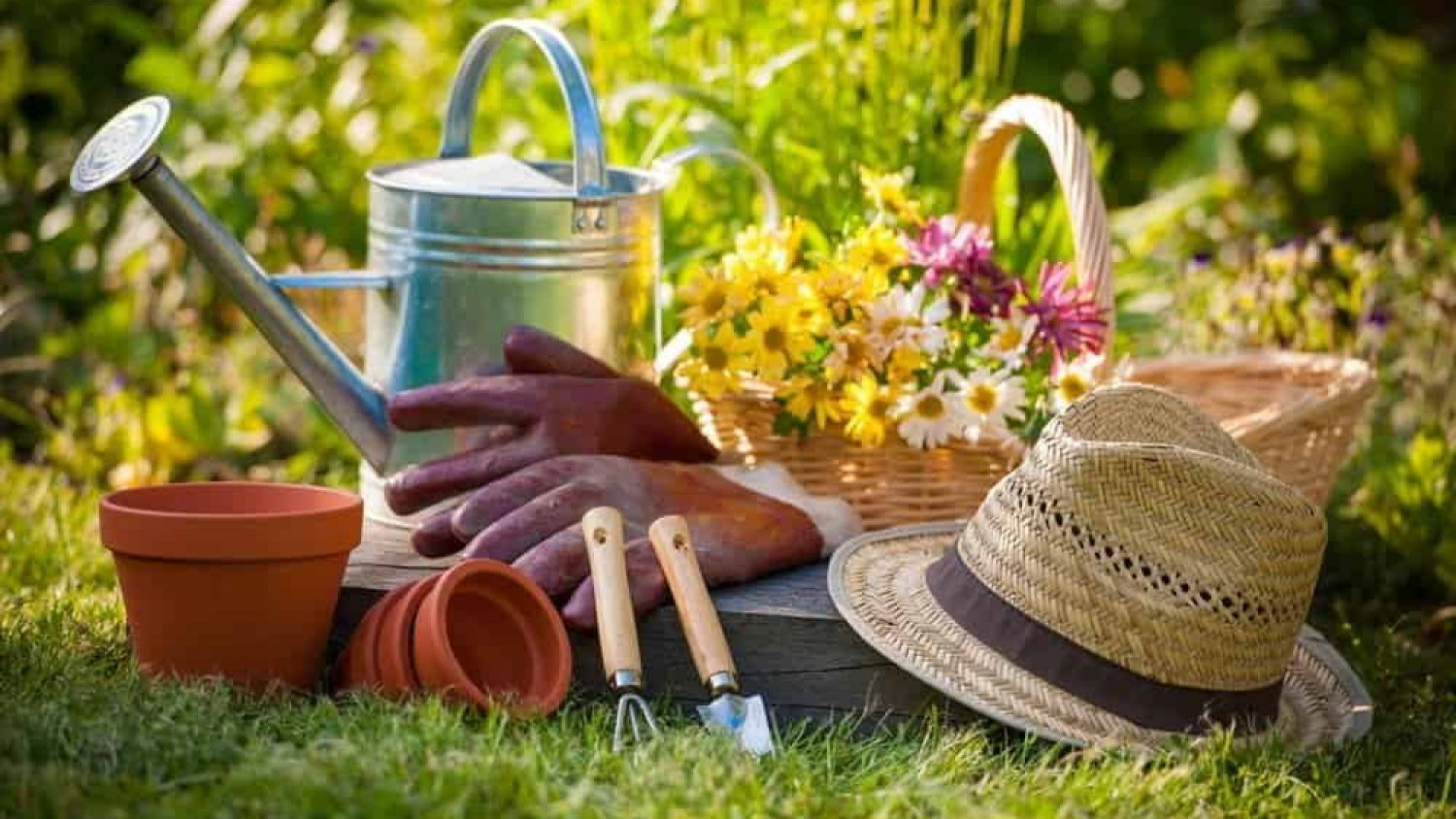 10 Essential Gardening Tools List and How to Use Them