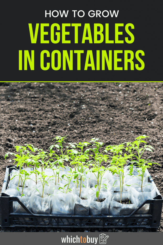 How-to-Grow-Vegetables-in-Containers