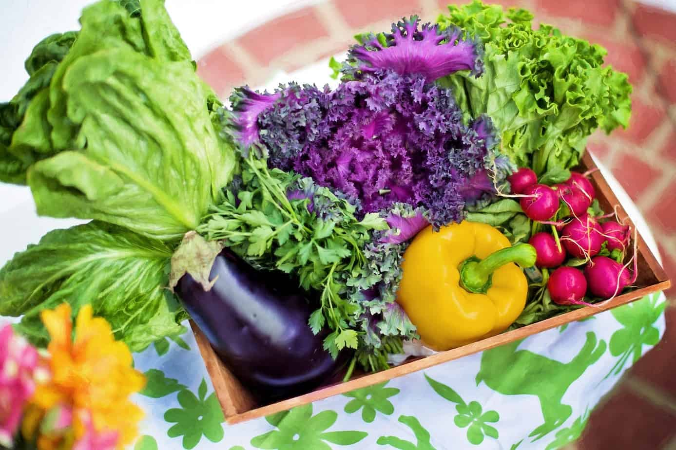 How to Grow Vegetables in Containers – 5 Simple Steps to Tasty Veggies All Year Round