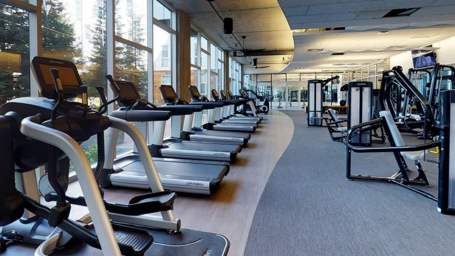 The Ultimate Guide of Treadmill or Cross Trainer Which Is Better?