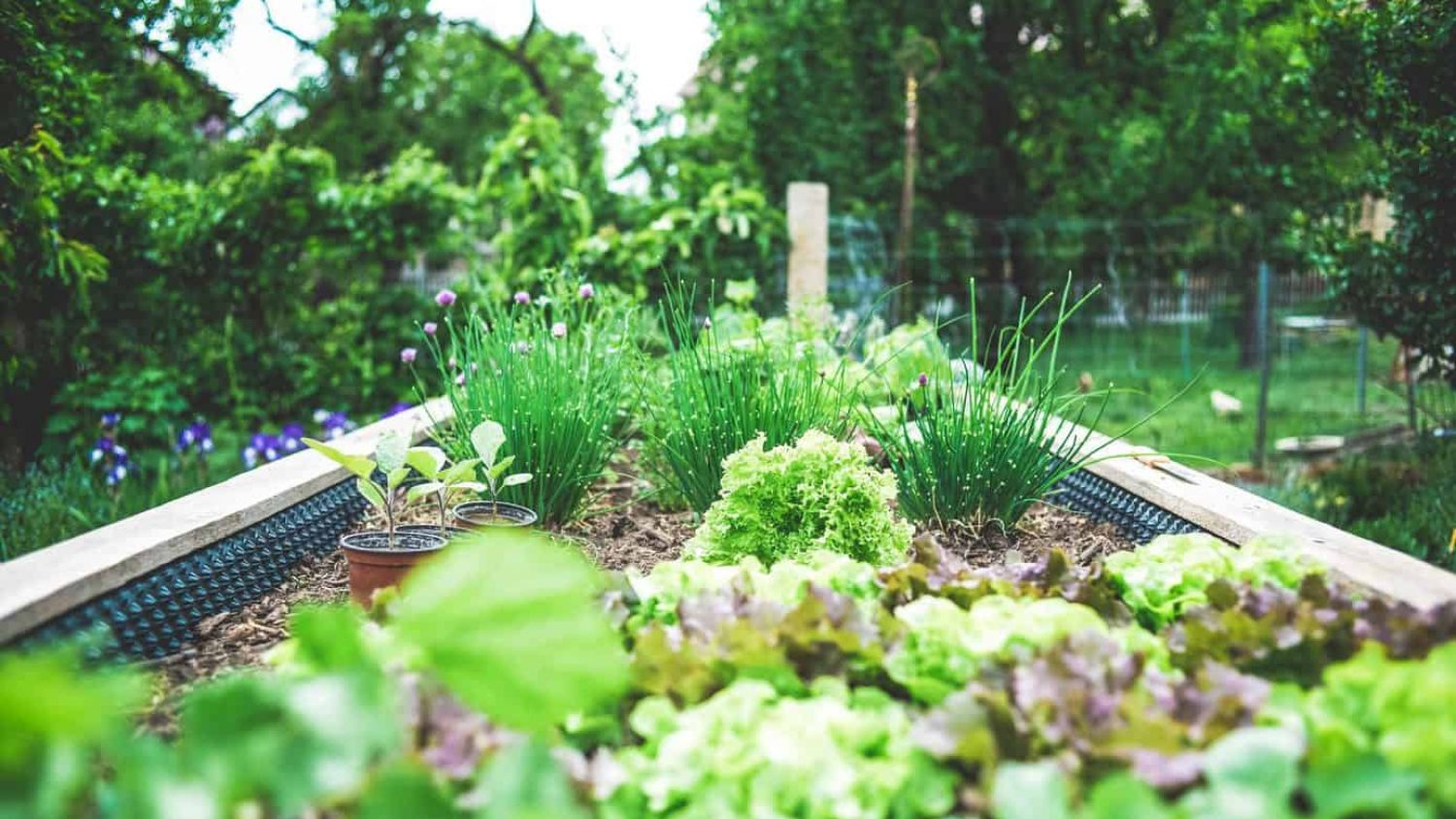 6 Fun DIY Garden Design Ideas – Make Your Space Unique On Your Own